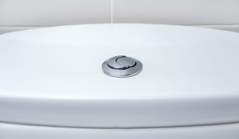 Dual flush